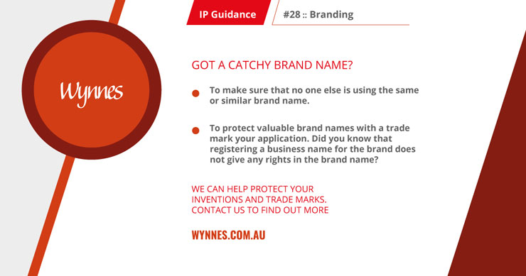 IP guidance catchy brand
